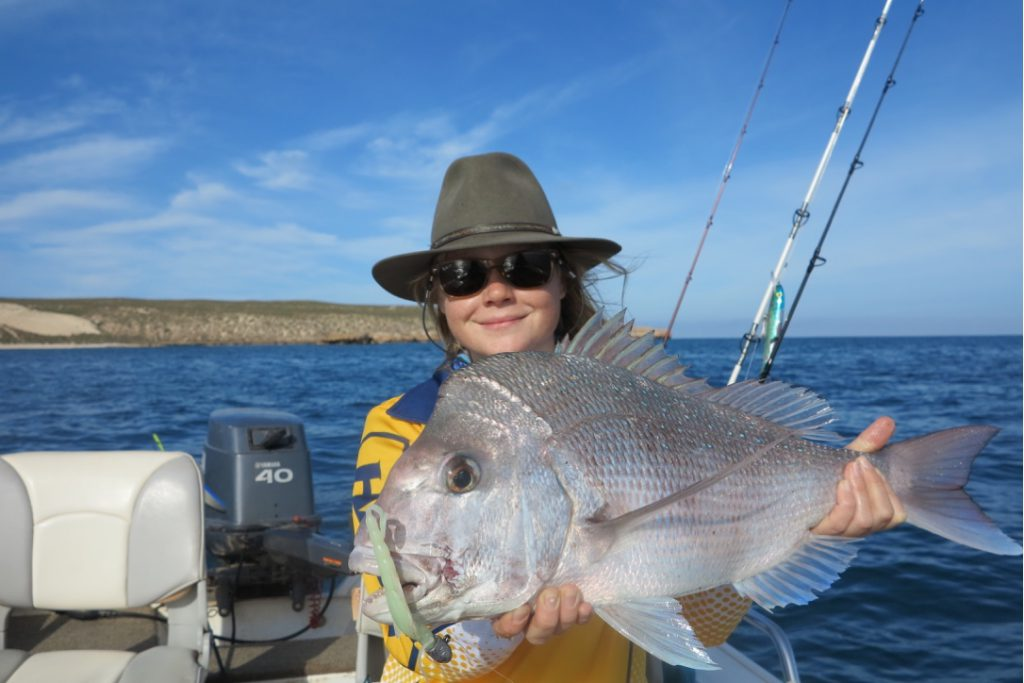 Shark Bay Fishing - Snapper