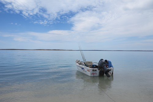 Shark Bay Weather
