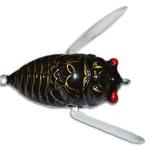 insekta-cicada-lure-black-gold