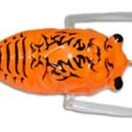 insekta-cicada-lure-orange-black