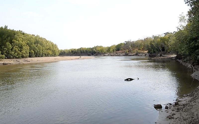 Buffalo Creek looking upstream on low tide