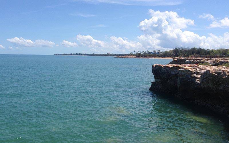 Nightcliff Cliffs - Queenfish and Trevally sometimes come in close on a high tide.