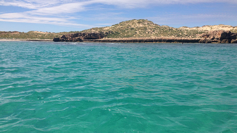 Reef at Point 7 can be fished on low tide land based. An out going tide is a good time to target Emperor and Trevally along the reef edge