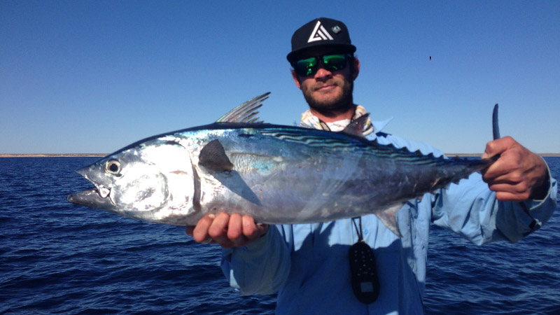 Tuna from the north Reef only a few km offshore of Coral bay