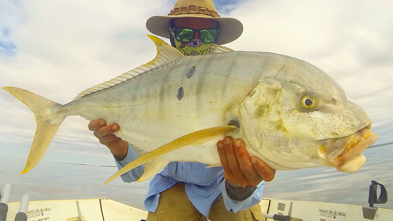 Big Golden Trevally taken from Gales Bay about 5kms from camp