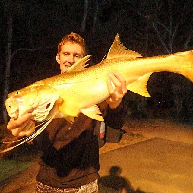 Land based Brisbane Fishing Spots | Fishing Spots Australia